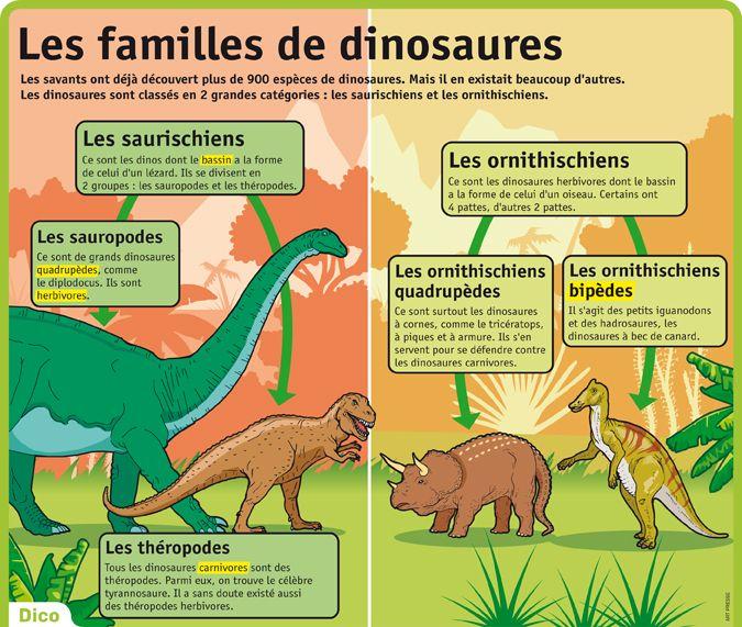 Les familles de dinosaures pr histoire 8 - Dinosaure marin carnivore ...