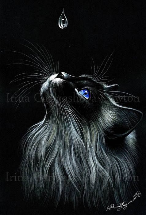 Pin By Angel Jolie On Cats Of Irina Garmashova Cawton Black Cat Art Cat Painting Animal Art
