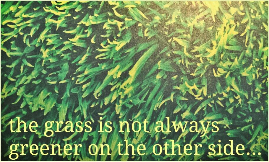 Grass Is Always Greener Quotes: Quotes On Being Greener Grass. QuotesGram