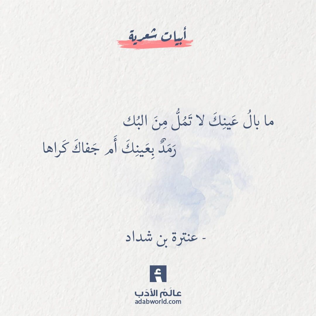 من اجمل ابيات الشعر الغزلية لـ عنترة بن شداد عالم الأدب Words Quotes Wisdom Quotes Life Quote Aesthetic