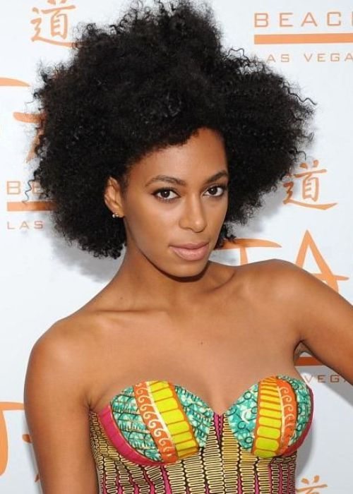 7 Solange Knowles African American Hairstyle Big Natural