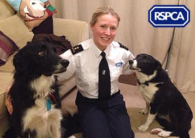 What An Rspca Inspector Wants For Christmas Large Animals Blog