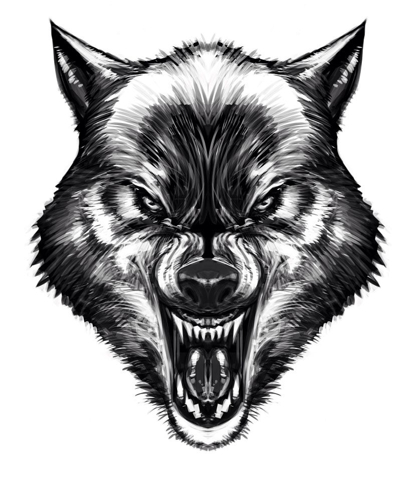 Wolf Tattoo Wolf Face Wolf Tattoos Wolf Face Drawing