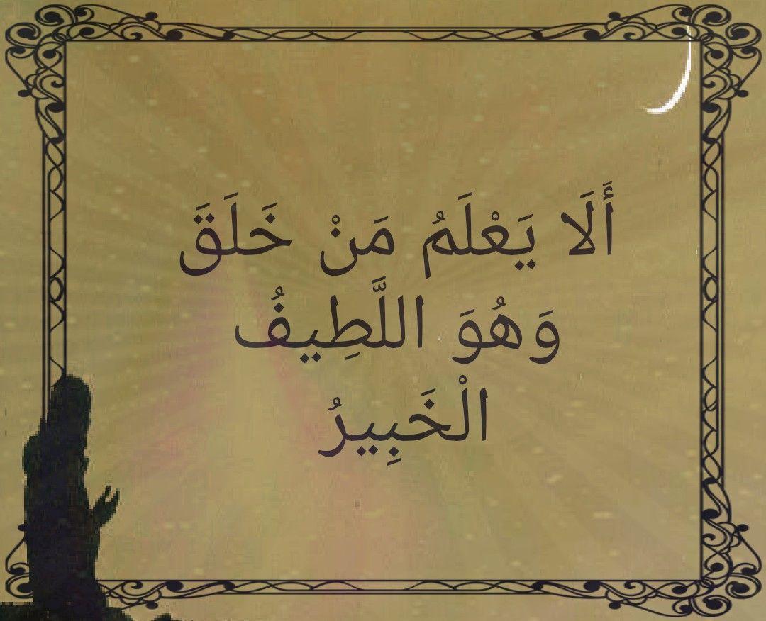 Pin By Gamila El Zein On كلمات قرانيه Hadeeth Pure Happiness Quran