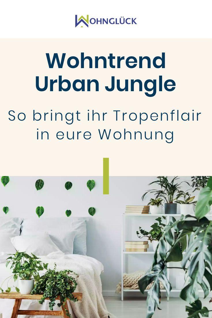 Wohntrend Urban Jungle: So bringt ihr Tropenflair in eure Wohnung #apartmentgardening
