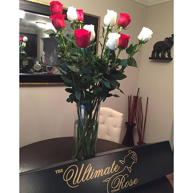3 Foot Red And White Roses Image Via Southern Duchess On Instagram Theultimaterose Com Theultimaterose Red And White Roses Rose Delivery Rose