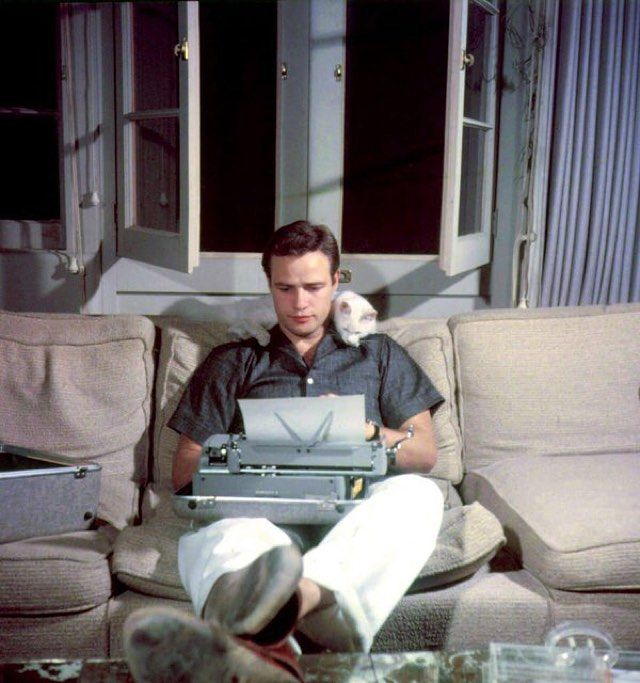 Marlon Brando typing with his cat in 1954.