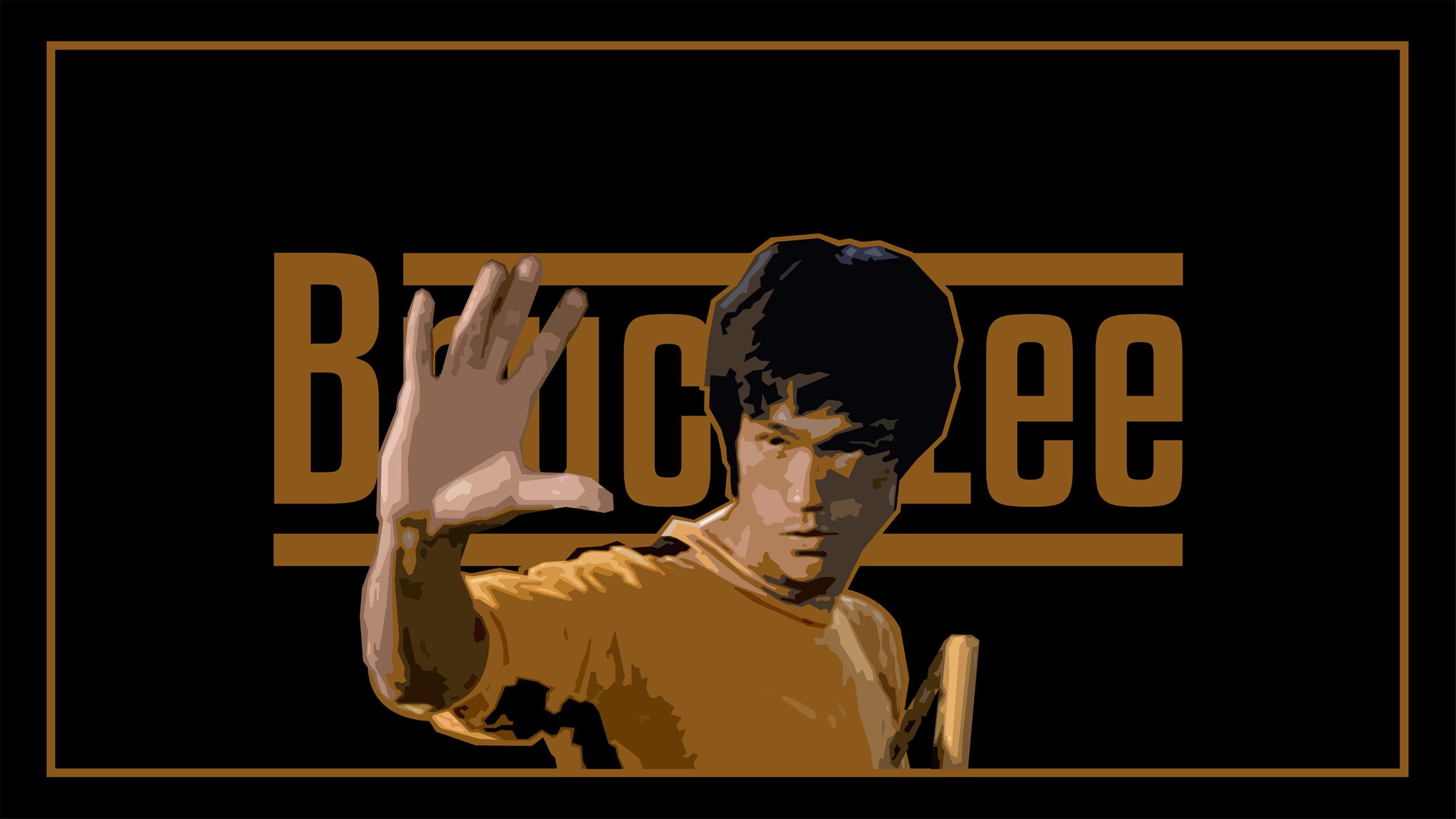 Bruce Lee Wallpapers HD Download HD Wallpapers