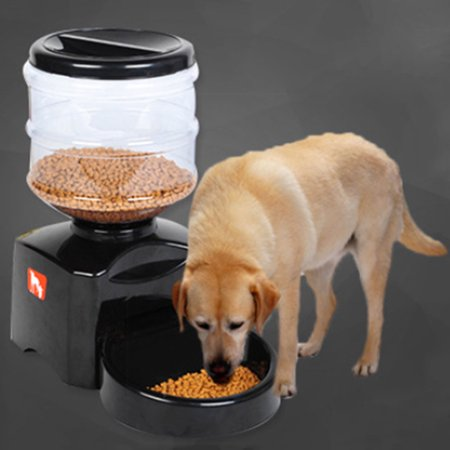 Pet Feeder 5 5l Automatic Dog Amp Cat Feeder With Timer Lcd
