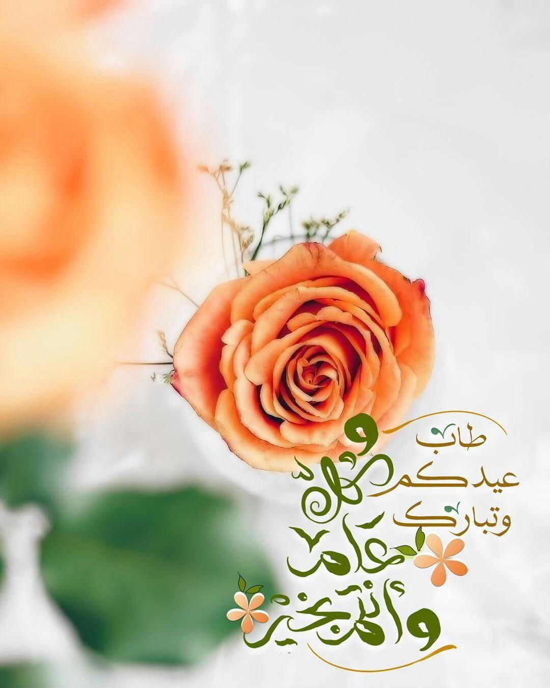 گل عآم ۆآن ت م ب خـي ر عي د سعي د Eid Greetings Eid Ul Adha Nature Photography