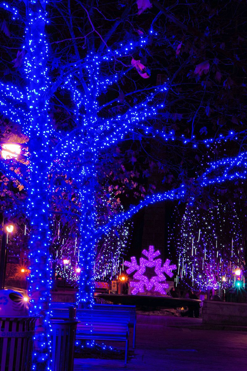 Christmas Lights In Nc 2019 Downtown Asheville, North Carolina, with Christmas lights in Pack