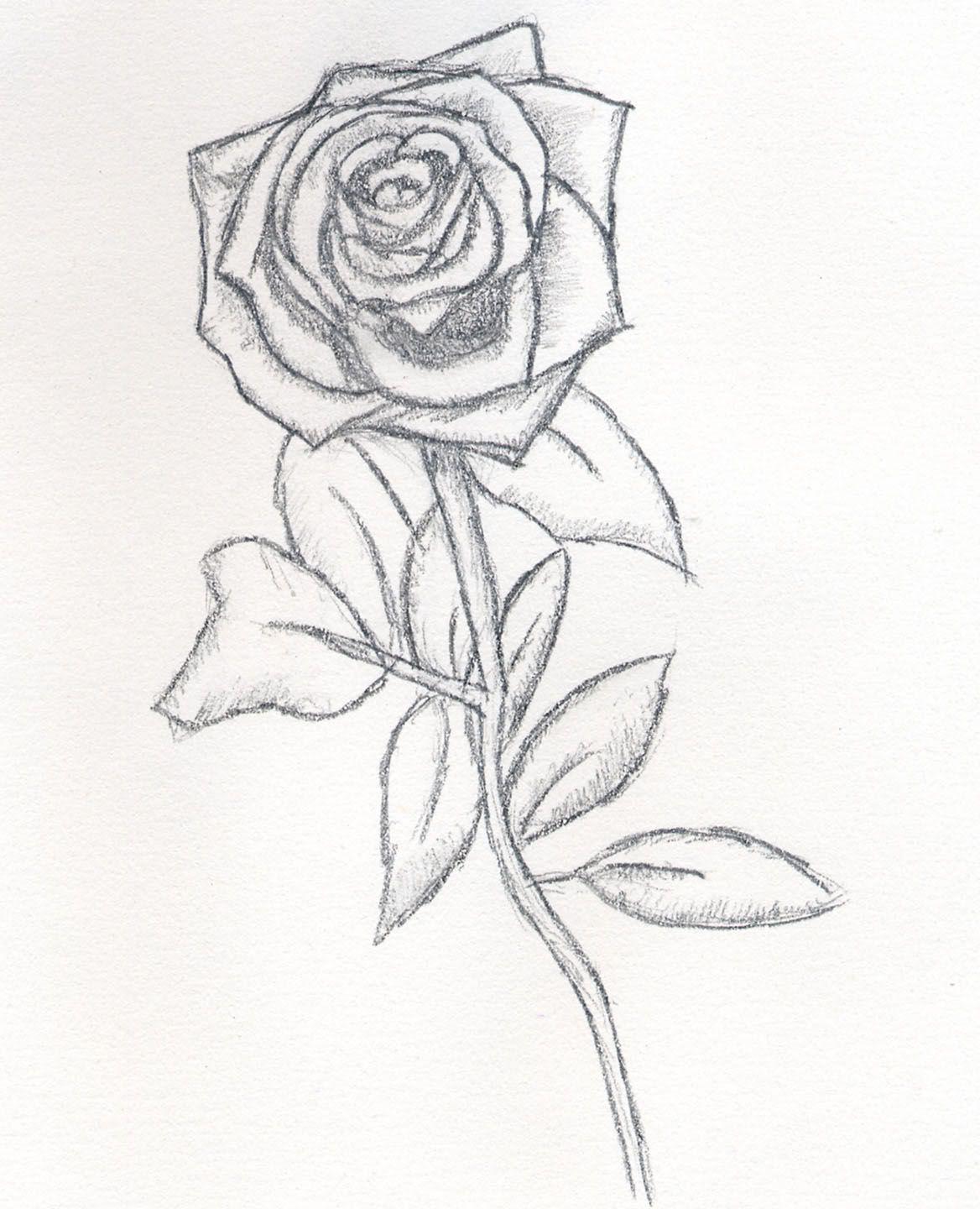 It's just an image of Simplicity Beautiful Rose Drawing