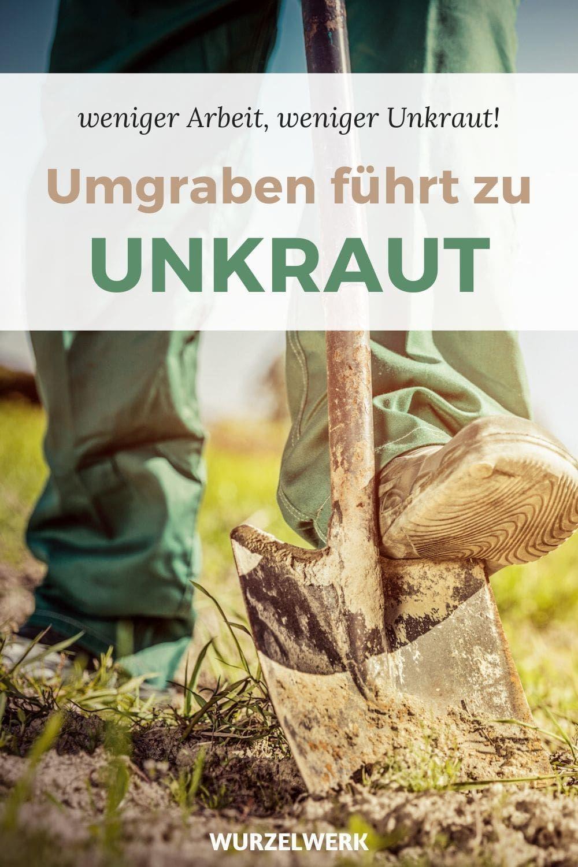 Umgraben führt zu Unkraut