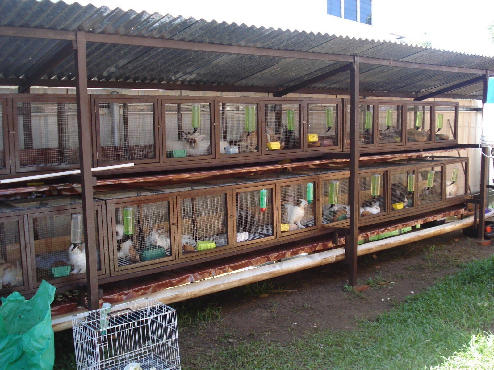 Commercial rabbit hutch the image kid for Outdoor rabbit enclosure ideas