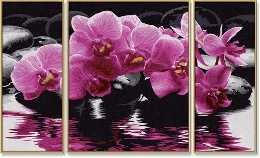 triptych   Краска, Орхидеи и Триптих