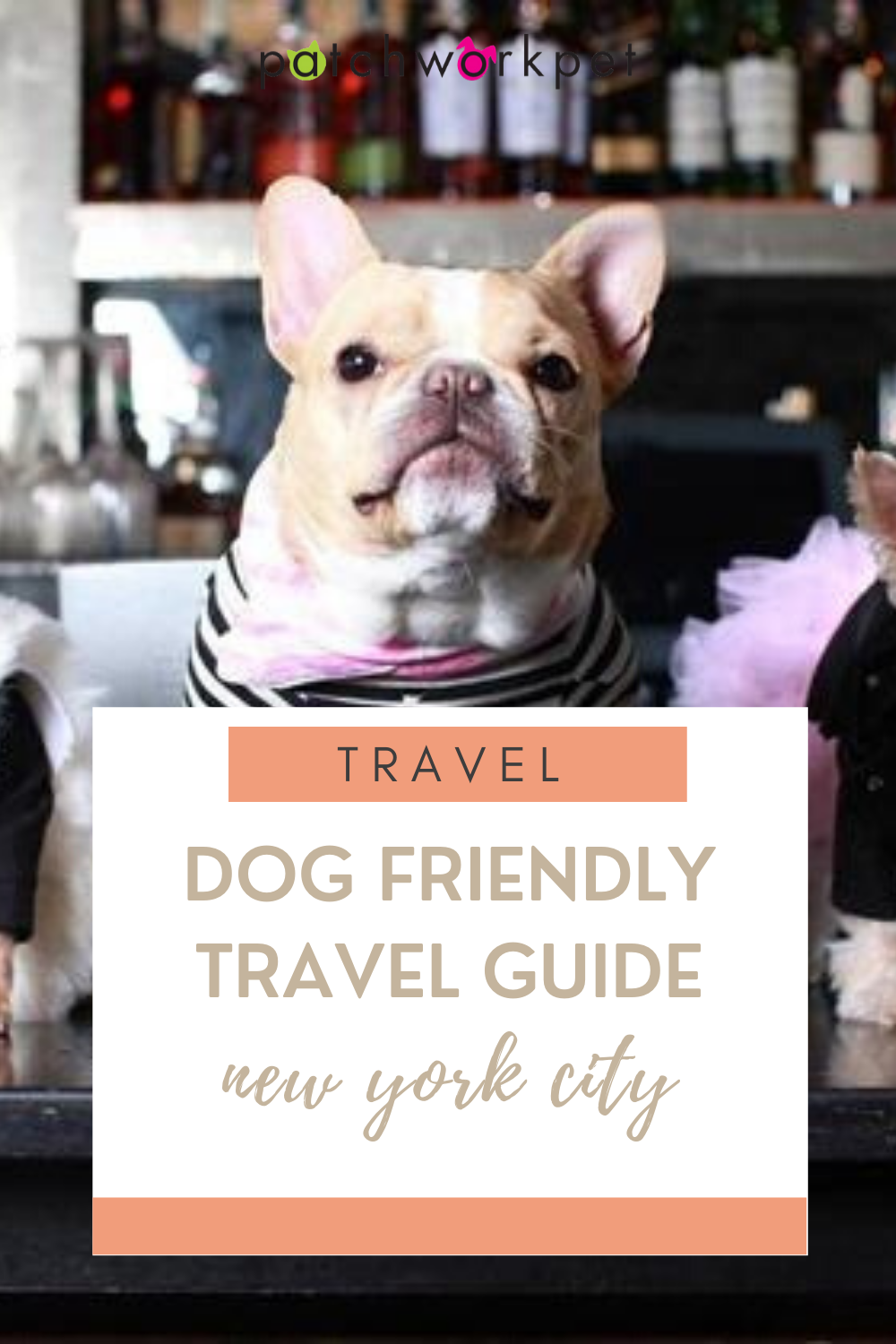 A Dog Friendly Travel Guide to New York City in 2020 Dog