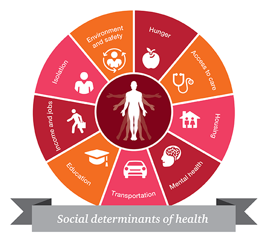 The Blueprint To Scaling Social Determinants Of Health Sdoh Data Collection Https Hitconsultant Social Determinants Of Health Heart Healthy Dinners Health