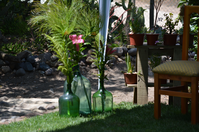 Decoración rustica, una terraza flores y cactus. Papiro en dama ...