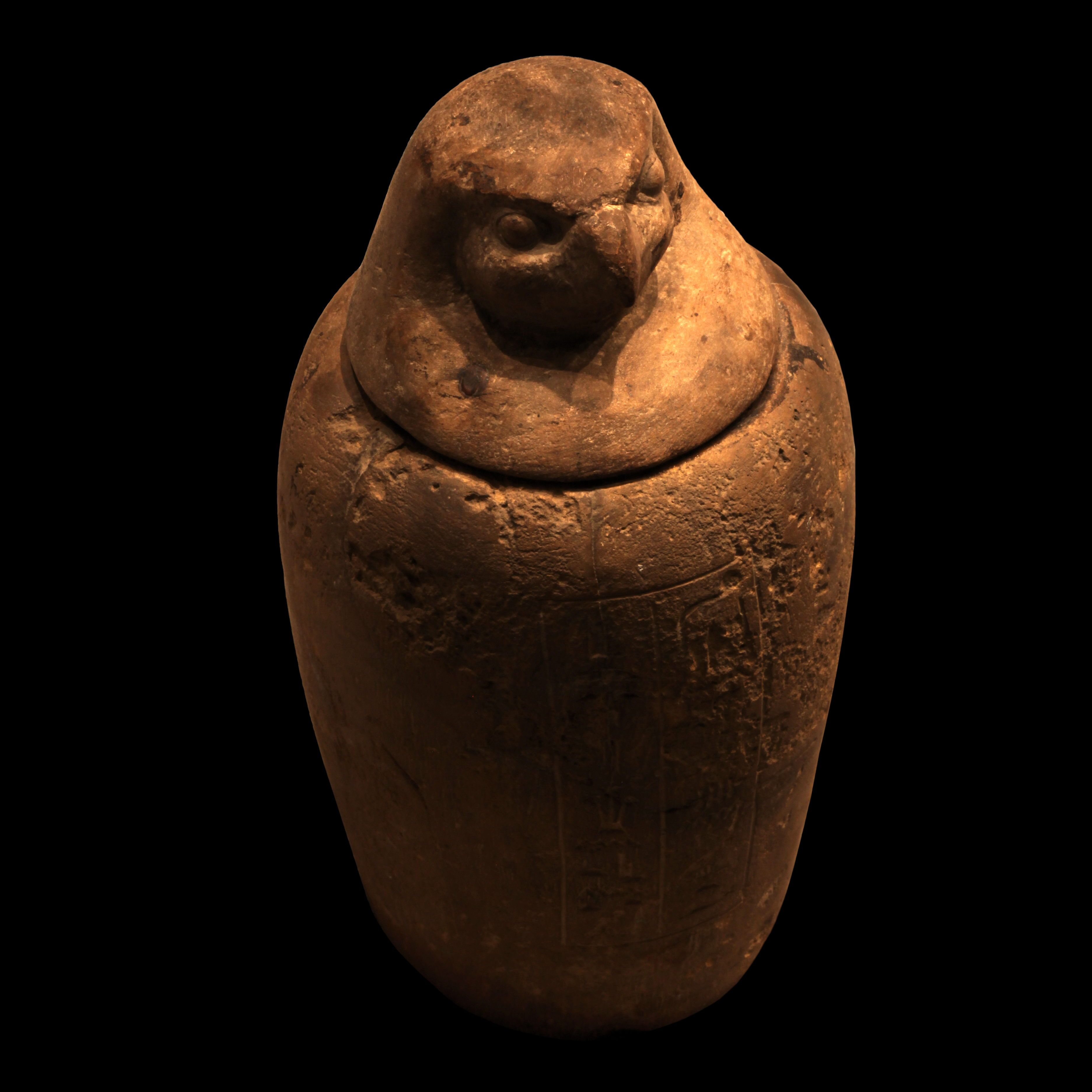 Horus canopic jar you know, for your mummy bits