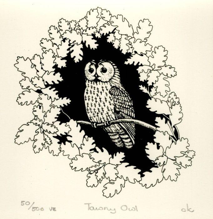 Tawny Owl, Screenprint by Carole King | Artfinder