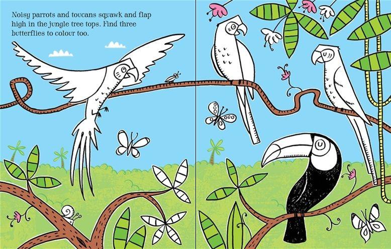 First Colouring Book Jungle At Usborne Children S Books Coloring Books Children S Books Usborne Books