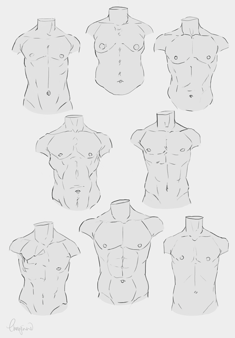 Male Body Type Reference In 2019 Body Reference Drawing