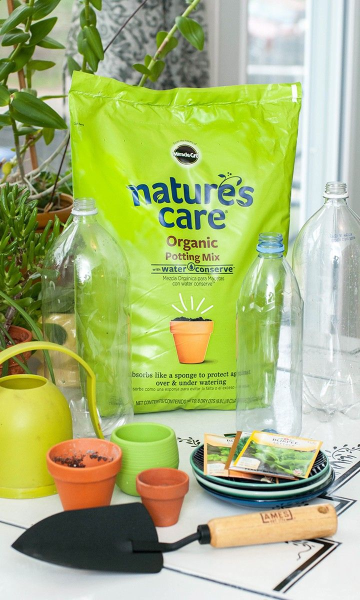 Garden In Style But Before You Can Build Your Own Mini Greenhouse Like Erin Efreedman You Have To Make Sure Yo Windowsill Garden Mini Greenhouse Potting Mix