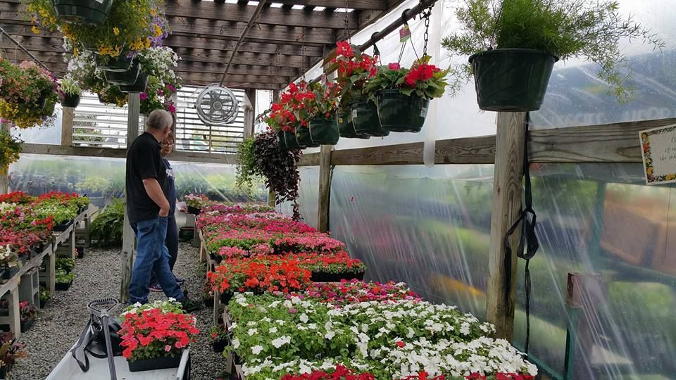 The 10 Best Garden Centers And Nurseries In North Carolina