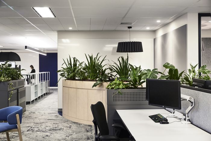 Office Tour: Financial Services Company – Sydney | Workplace Design