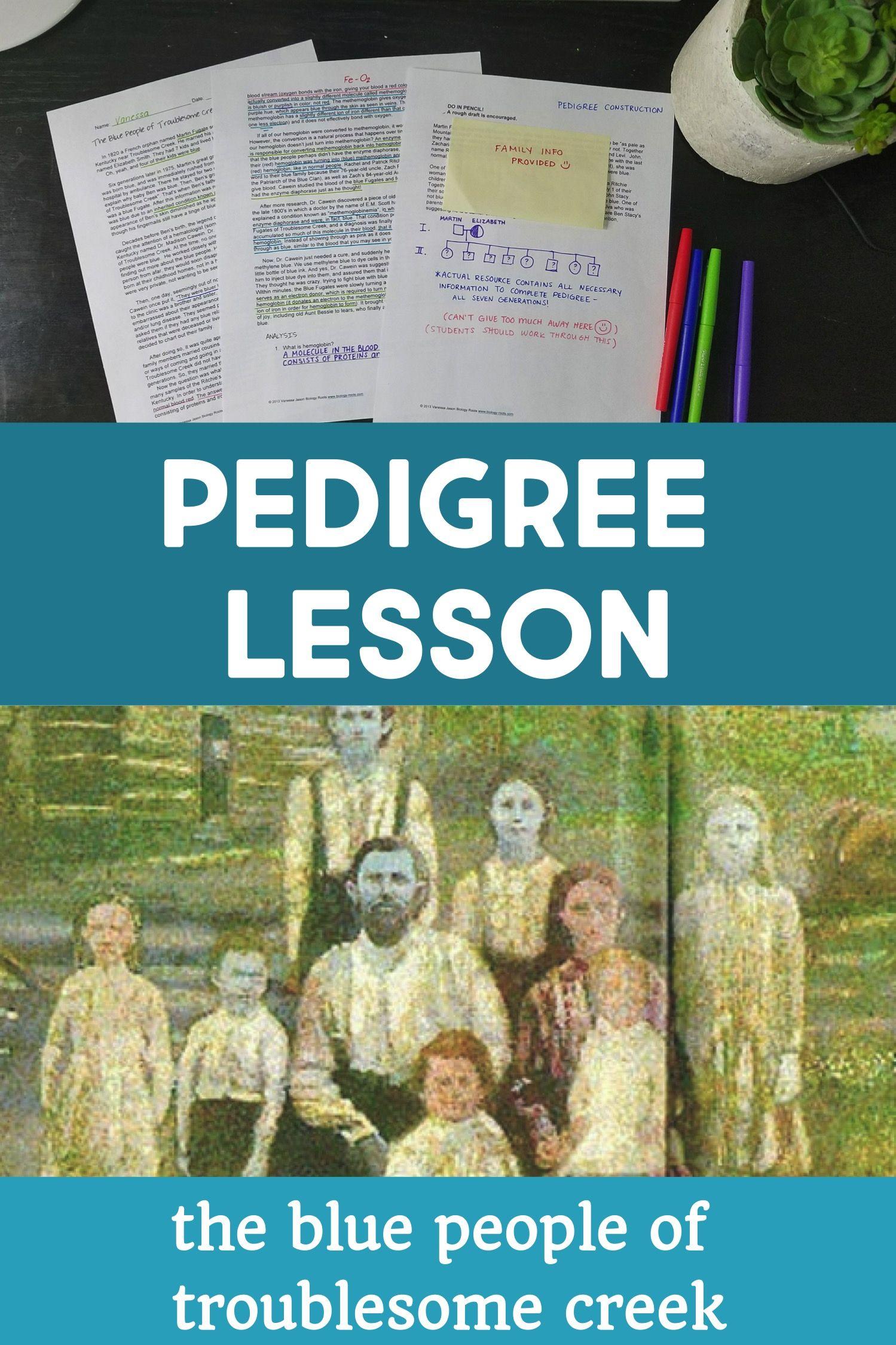Pedigree Practice The Blue People Pedigree Activity