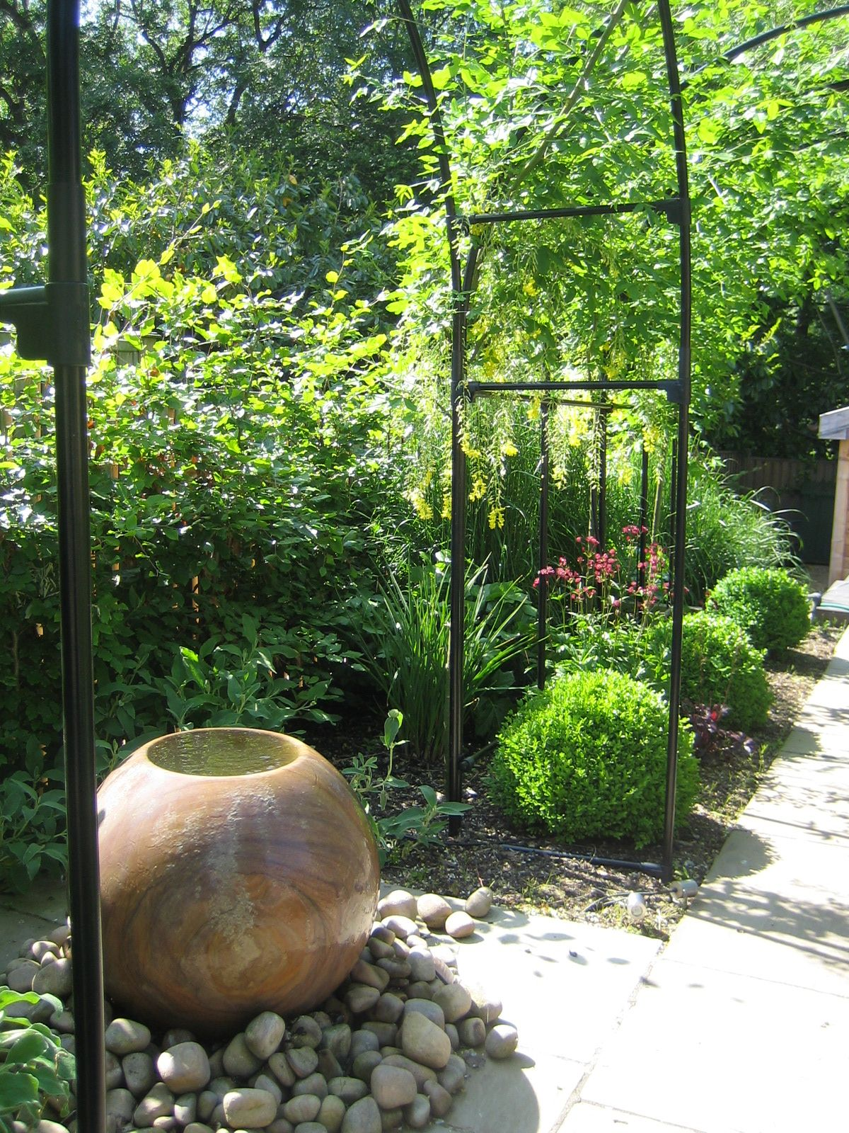 contemporary water feature with reflective box ball planting from