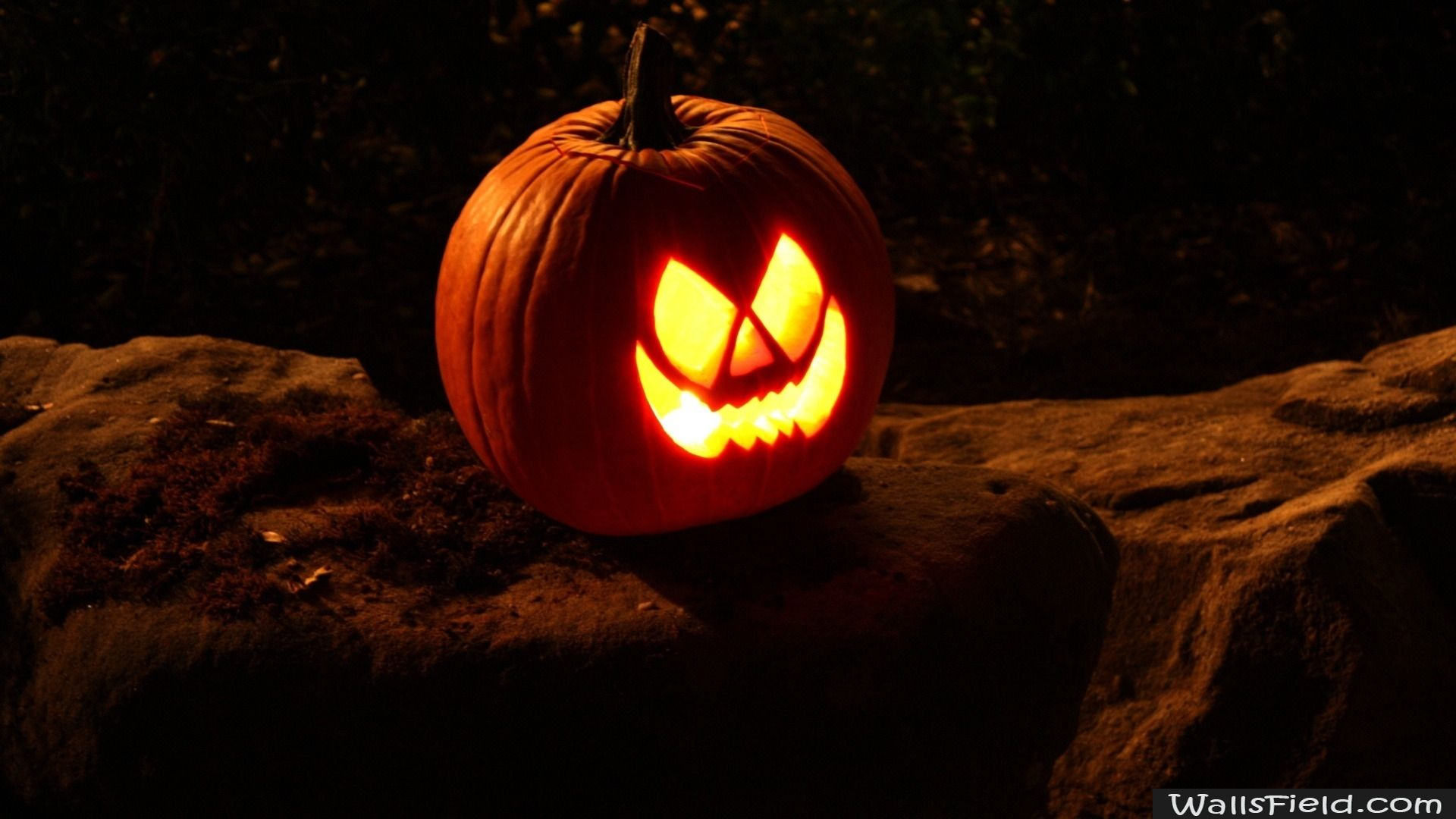 Best Wallpaper Halloween Tablet - 3589f1833e24d20ada84506cc90ad35b  Perfect Image Reference_73336.jpg