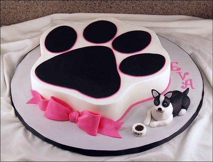 Free UK Delivery On All Cakes With Each Cake Handmade To Order Book Your Cat Easily Online Or Call Us 01753 374 726