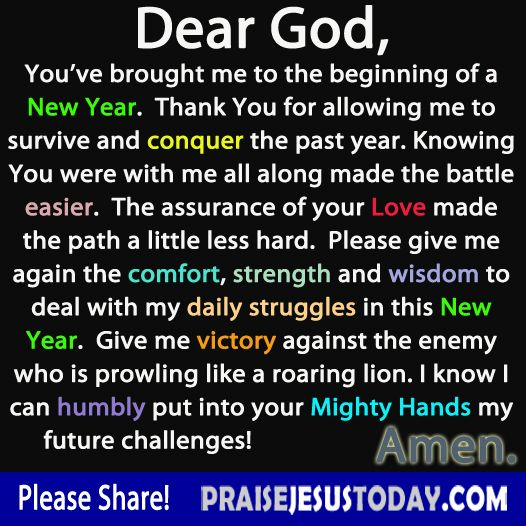 Dear God, You've brought me to the beginning of a New Year. Thank You for allowing me to survive and conquer the past year. Knowing You were with me all along made the battle easier. The assurance of your Love made the path a little less hard. Please give me again the comfort, strength and wisdom to deal with my daily struggles in this New Year. Give me victory against the enemy who is prowling like a roaring lion. I know I can humbly put into your Mighty Hands my future challenges! Amem!