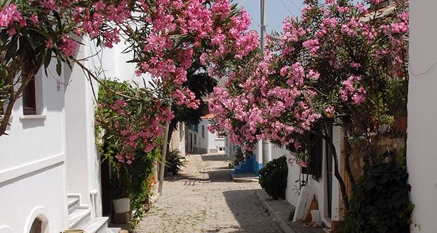 Bozcaada-Türkiye