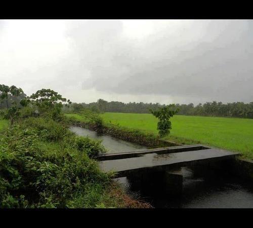 Natural Beauty Of Kerala Naturalbeauty Kerala Kerala Tourism Kerala Travel Tourist Places