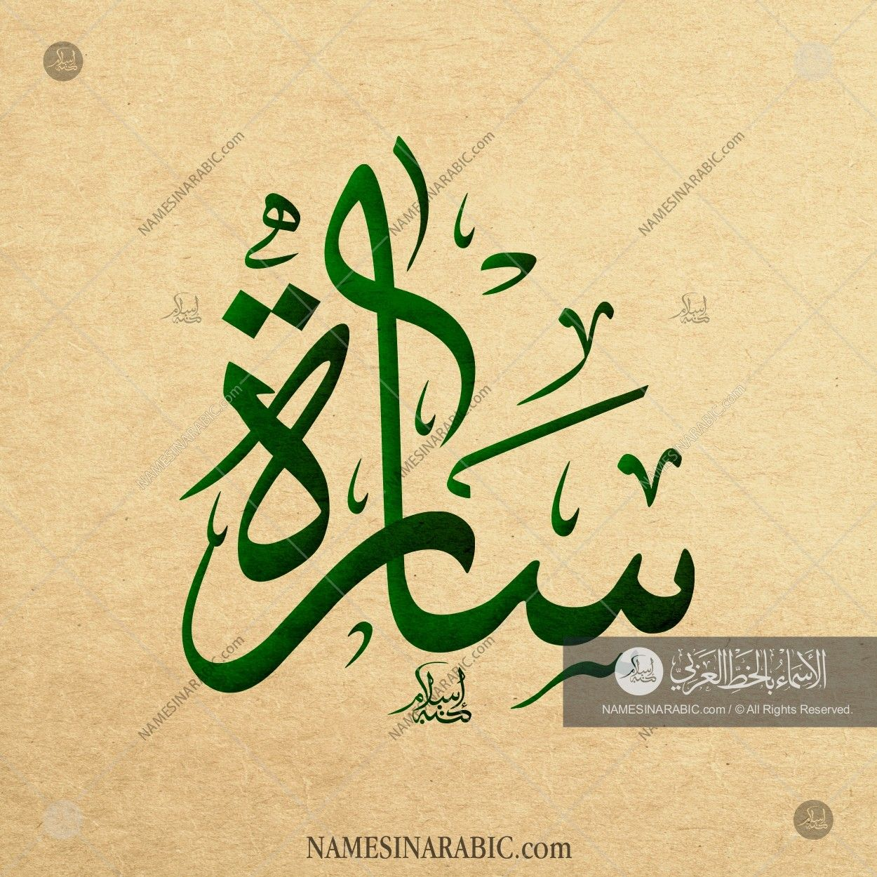Sarah - سارة / Names in Arabic Calligraphy | Name# 5064 | arabic in