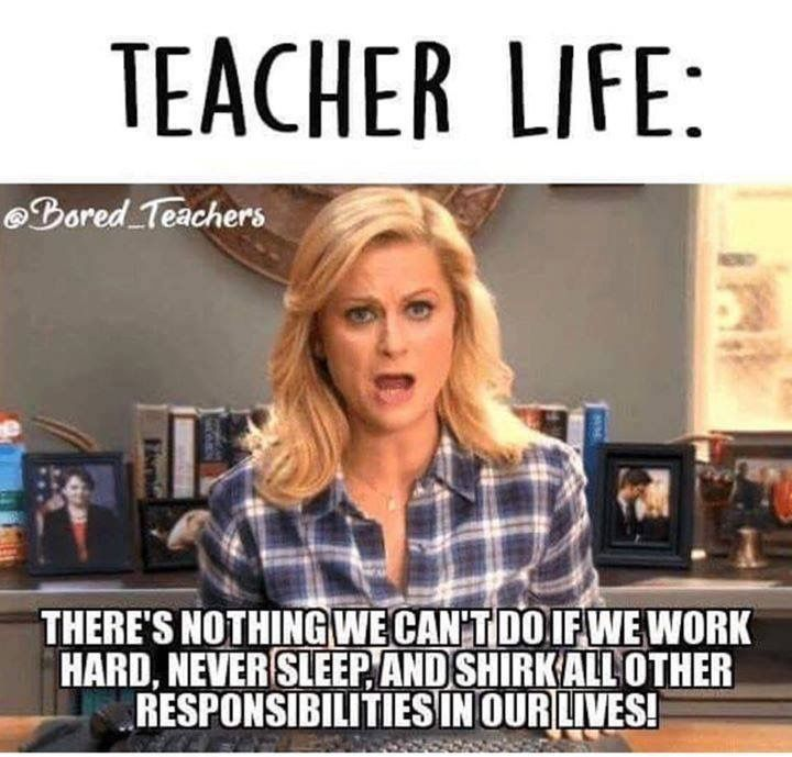 Pin By Katie Wiggins On Teacher Humor Teacher Humor Teacher Memes Teacher Jokes