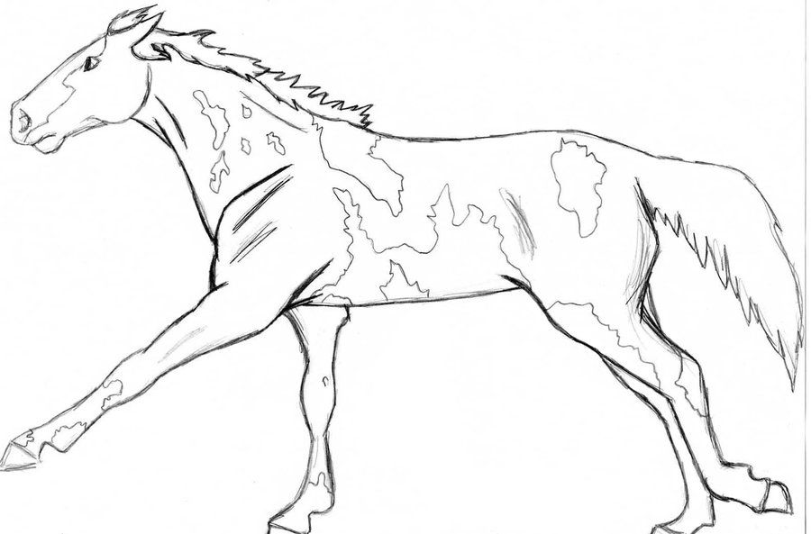Realistic Wolf Coloring Pages   Paint or Pinto horse by angry-wolf ...
