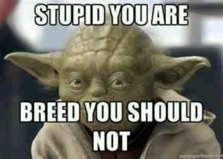 Pin By Terry Jesse On Funny Yoda Quotes Yoda Funny Funny
