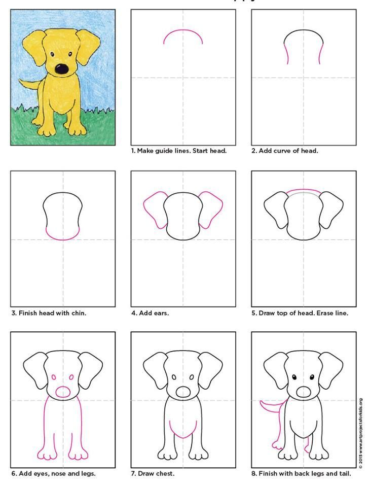 how to draw a puppy for kids
