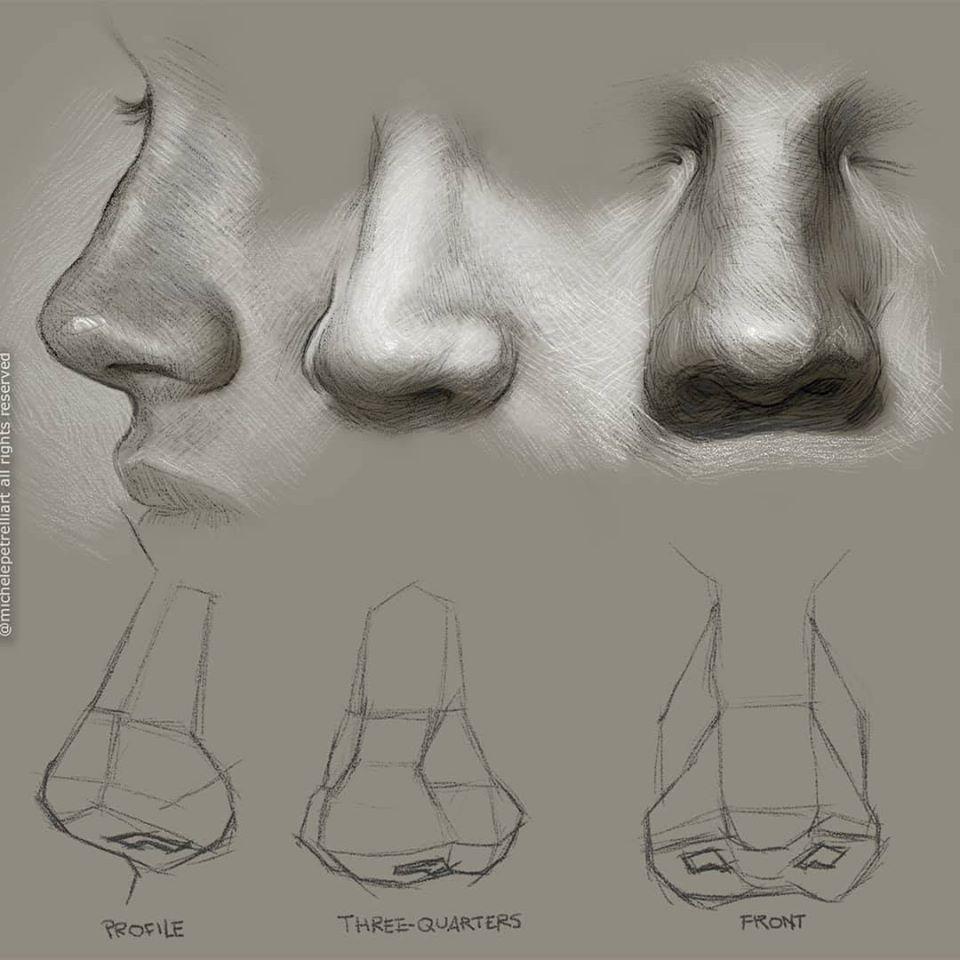 Narices Imagenes De Nariz Dibujos Figura Humana Rostros De Arte