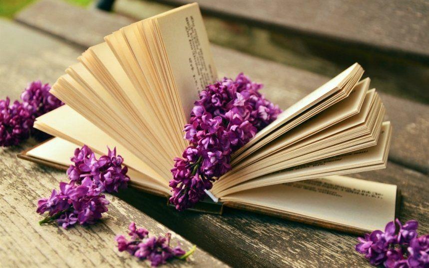 Картинки по запросу фото книг | Сирень, Литература и Книга ...