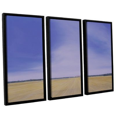 ArtWall 'Rise' by John Sabraw 3 Piece Framed Photographic Print Set Size: