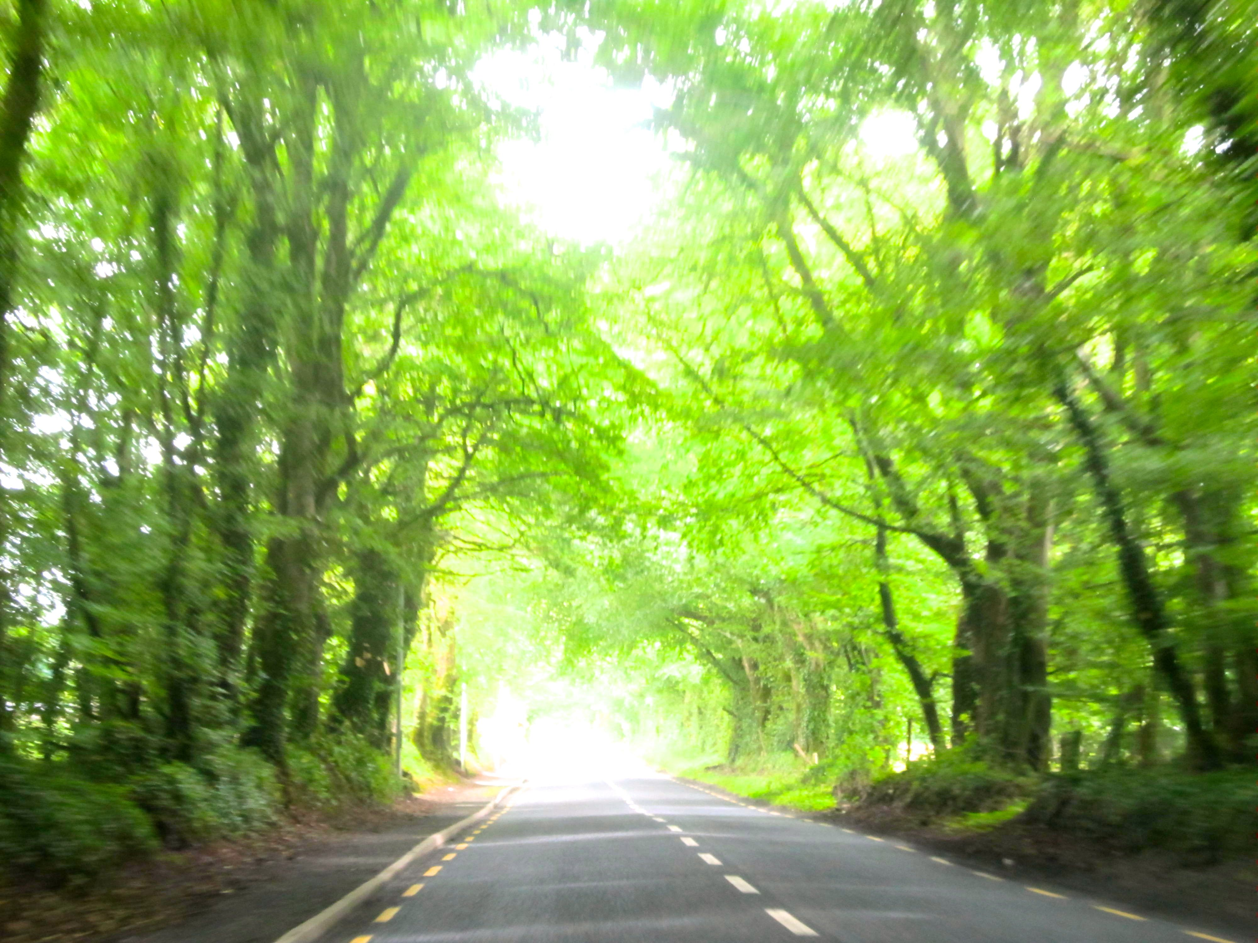 Country Road In Co Galway Ireland Amature Photography