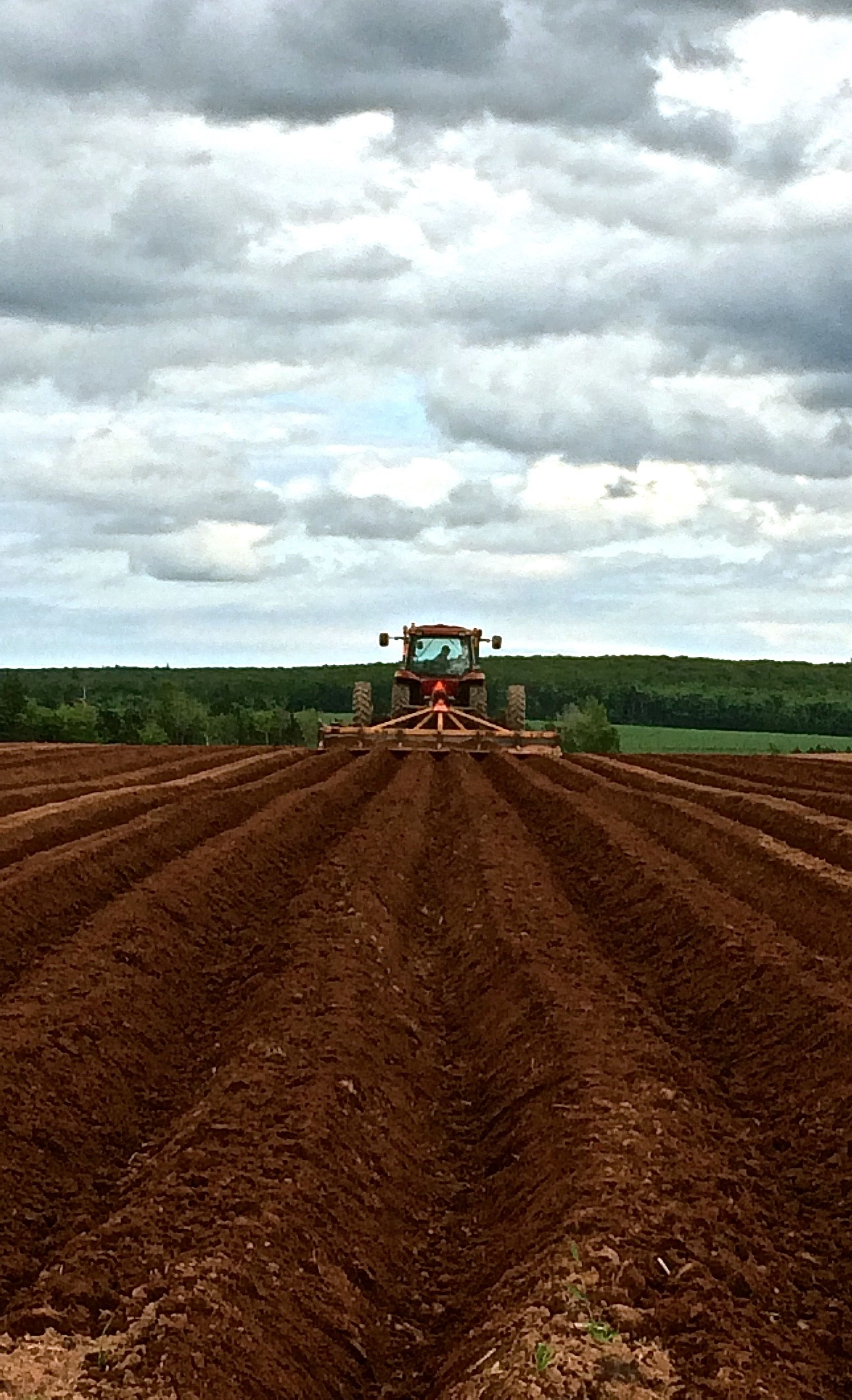 Preparing the rows one by one