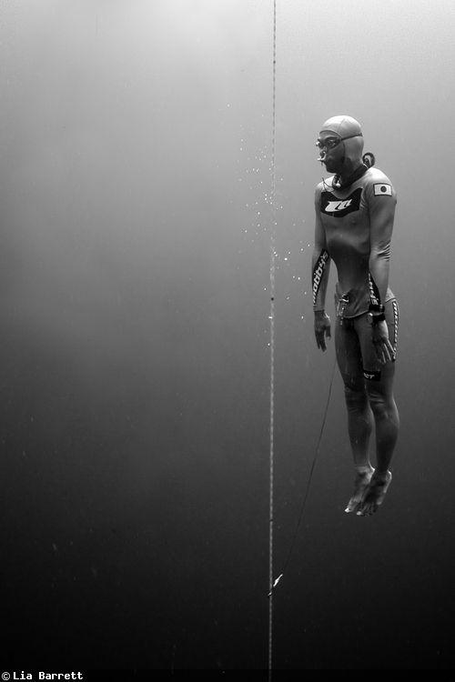 Freediving Underwater Photography (avec