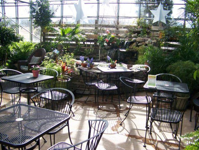 358e6b1dde17f4dd7854a7878b3fd6b4 - Gardener's Supply Williston Garden Center