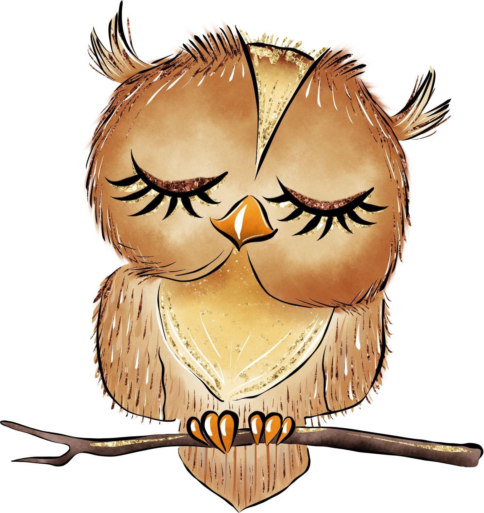 Pin Von Ashley Elder Auf Owl Insanity Eule Malen Eule Zeichnung Eulen Zeichnen