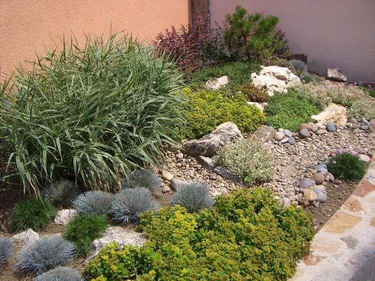 steingarten-anlegen-bodendecker-baerenfellgras Garten - kleiner steingarten bilder